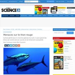 Menaces sur le thon rouge - Pour la Science