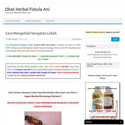 2 Cara Mengobati Sengatan Lebah - AMPUH, 3 HARI SEMBUH