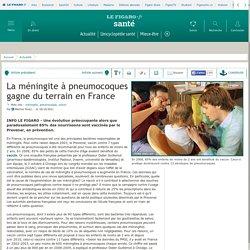 La méningite à pneumocoques gagne du terrain en France