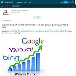 Jasa Visitor Web Traffic Web
