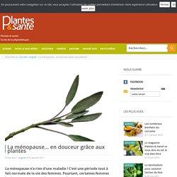 La ménopause… en douceur grâce aux plantes - soigner - Plantes & santé