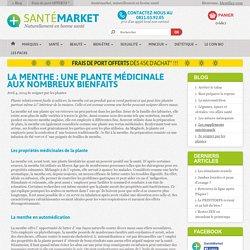 La menthe et ses diverses propriétés - Santé market