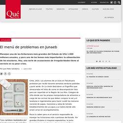 El menú de problemas en Junaeb Revista Qué Pasa