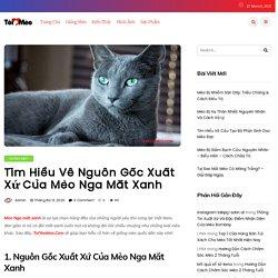 Mèo Nga Mắt Xanh Và Những Bí Mật Cần Khám Phá