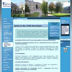Après un Bac STMG Mercatique - Lycée Bertrand d'Argentré VITRE