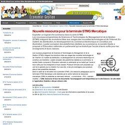 Nouvelle ressource pour la terminale STMG Mercatique — EcoGestion