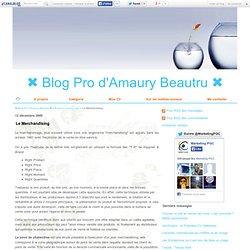 Le Merchandising - ✖ Blog Pro d'Amaury Beautru ✖