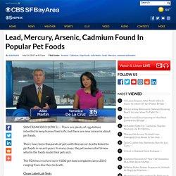 Lead, Mercury, Arsenic, Cadmium Found In Popular Pet Foods