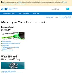 Mercury in Your Environment