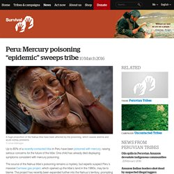 "Peru: Mercury poisoning ""epidemic"" sweeps tribe"