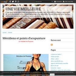 Méridiens et points d'acupunture - UNE VIE MEILLEURE