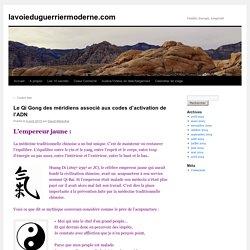 Le Qi Gong des méridiens associé aux codes d'activation de l'ADN