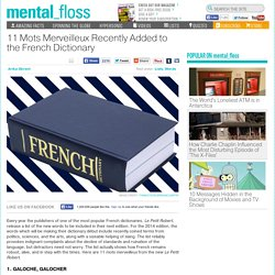 11 Mots Merveilleux Recently Added to the French Dictionary