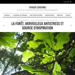 La forêt, merveilleux antistress et source d'inspiration