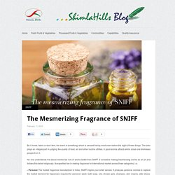 The Mesmerizing Fragrance Of SNIFF – Shimla Hills India