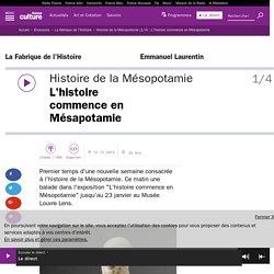 Histoire de la Mésopotamie (1/4) : L'histoire commence en Mésapotamie