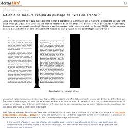 A-t-on bien mesuré l'enjeu du piratage de livres en France ?