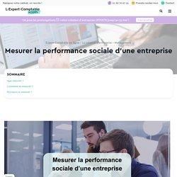 Mesurer la performance sociale d'une entreprise