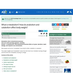 What is metabolism? How do anabolism and catabolism affect body weight? Medical News Today