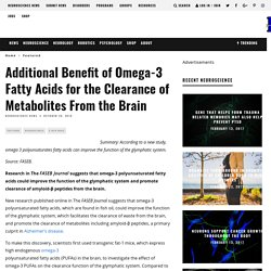 Additional Benefit of Omega-3 Fatty Acids for the Clearance of Metabolites From the Brain – Neuroscience News