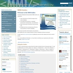 Marine Metadata Interoperability
