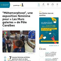 """""""Métamorphose"""", une exposition féminine pour « Les Murs galeries » de Pôle Caraïbe..."""