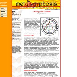 metAMORphosis: Conscious Evolution Newsletter