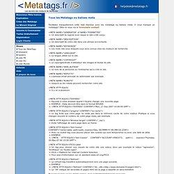 la liste entendue des metatags. Une glossaire de tous les metatags - Metatags.fr Site Officiel