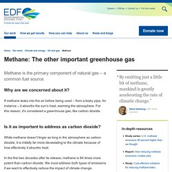 Methane: The other important greenhouse gas