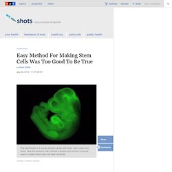 Easy Method For Making Stem Cells Was Too Good To Be True