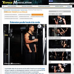 Triceps à la Corde - Musculation