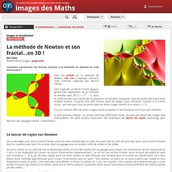 Images des mathématiques - La méthode de Newton et son fractal...en 3D !