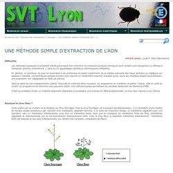 Une méthode simple d'extraction de l'ADN - SVT Lyon