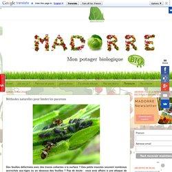 Madorre, mon potager bio: Méthodes naturelles pour limiter les pucerons
