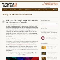 Méthodologie : Google Images pour identifier des spécialistes d'un domaine - Recherche éveillée
