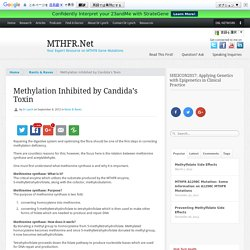 Methylation Inhibited by Candida's Toxin - MTHFR.Net