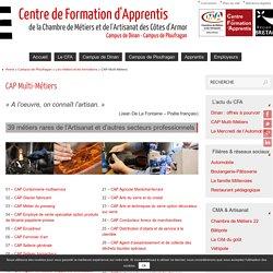 CAP Multi-Métiers - CFA - Campus de Ploufragan - Côtes d'Armor