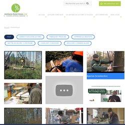 Les métiers de la filière Forêt et Bois en vidéos