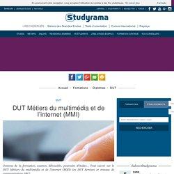 DUT Métiers du multimédia et de l'internet (MMI)