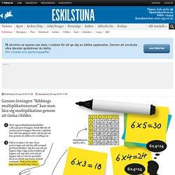 Bok om ny metod för att lära sig matte - Eskilstuna
