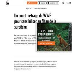 Un court métrage du WWF pour sensibiliser au fléau de la surpêche