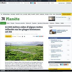 53 000 mètres cubes d'algues vertes collectés sur les plages bretonnes cet été