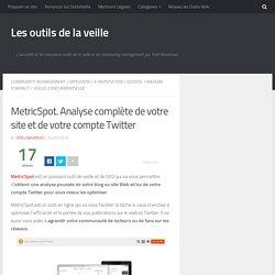 MetricSpot. Analyse complète de votre site et de votre compte Twitter