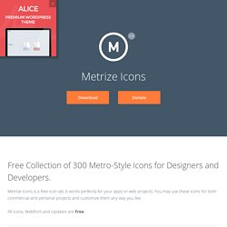 300 Icons for Designers & Developers