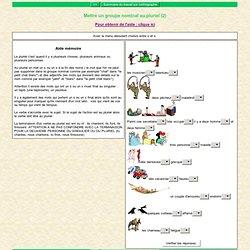 Mettre un groupe nominal au pluriel (2)