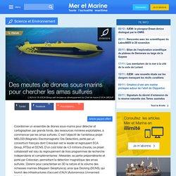 Des meutes de drones sous-marins pour chercher les amas sulfurés
