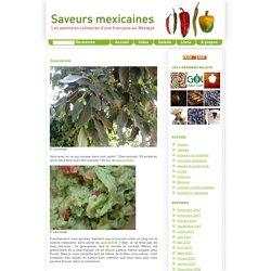 Saveurs mexicaines - Recettes de cuisine mexicaine