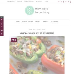 Mexican Chipotle Beef Stuffed Peppers - from cats to cooking