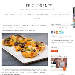The Mexicola Avocado and Mexican Potato Skins - Life Currents