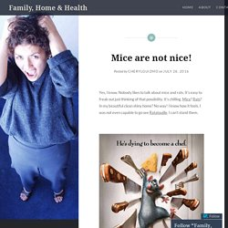 Mice are not nice! – Family, Home & Health